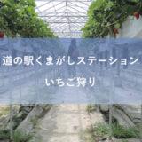 奈良県平群町「道の駅くまがしステーション」でいちご狩りをした!